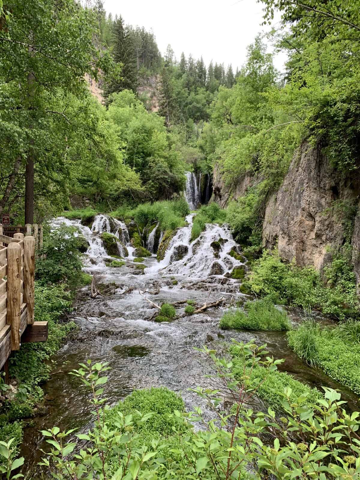 Explore the waterfalls and beautiful canyon walls of Spearfish Canyon Scenic Byway, South Dakota | Roughlock Falls | One Girl, Whole World