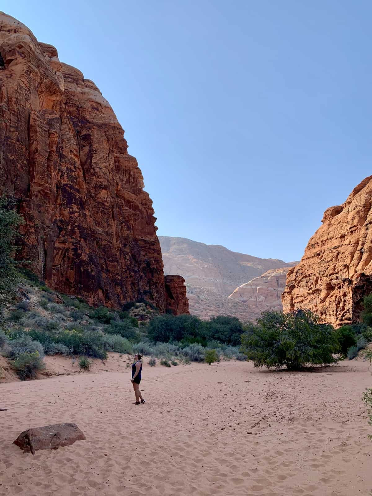 At times you'll feel like you're in Zion at Snow Canyon State Park