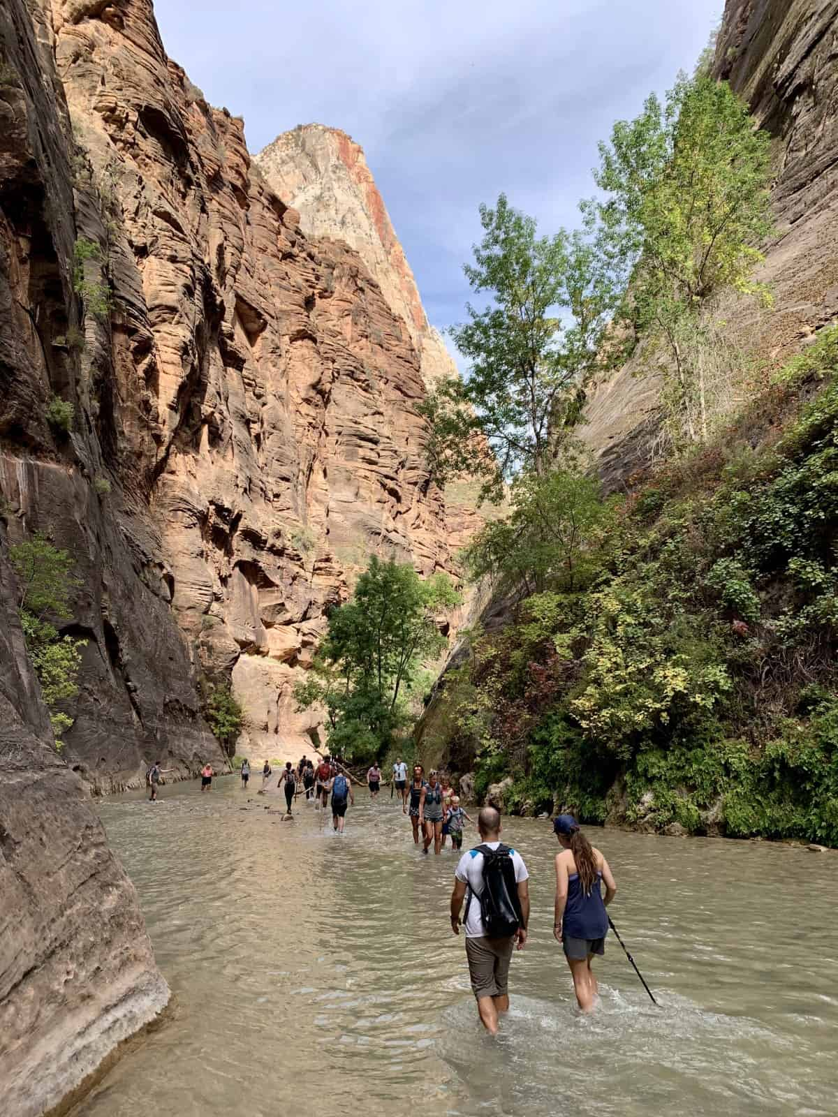 How To Plan a Visit to Zion National Park During COVID   If you're wanting to visit Zion during COVID, it's important to plan ahead and know about the changes and restrictions. What you need to know about Zion shuttle tickets, shuttle stop closures, alternative ways to visit, and more! What to do in Zion. #nps #zion #covidrestrictions #traveltips #zionnationalpark