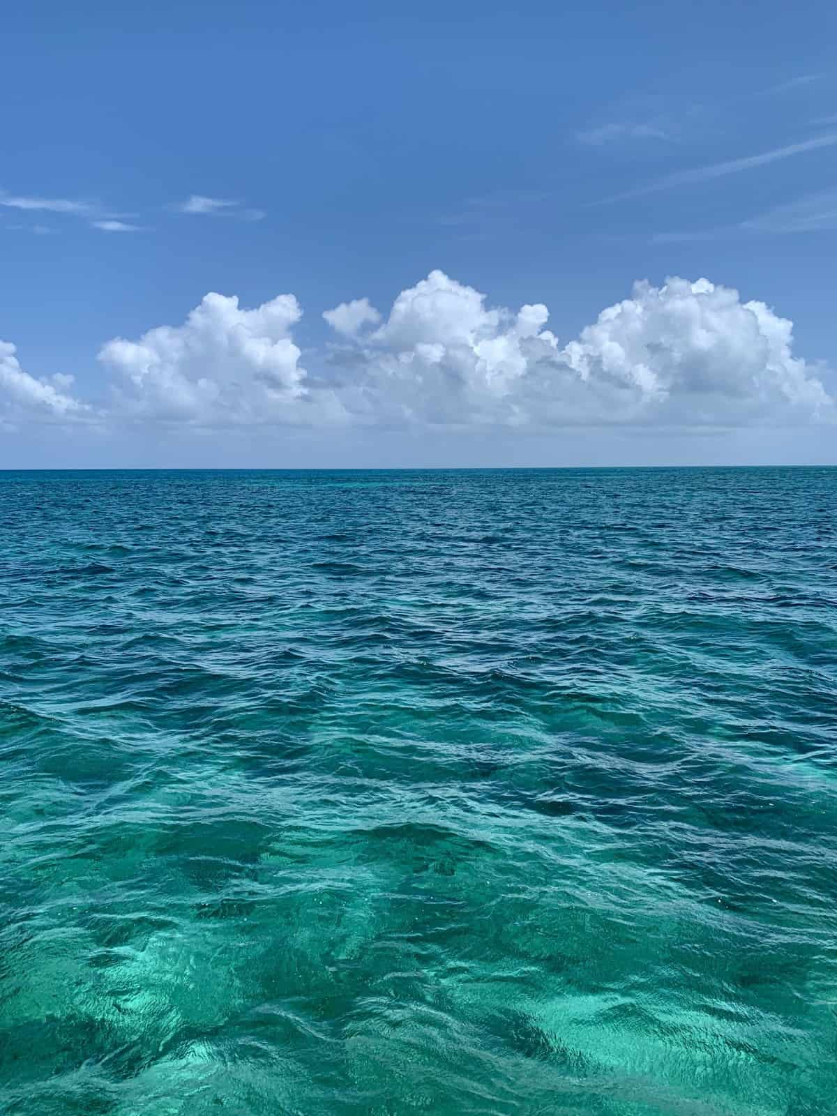 What it Was Like Open-Water Sailing Key West to Dry Tortugas | Ever wondered what a multi-day sailing trip on the open water is like? I did a 5-day trip from Key West to Dry Tortugas National Park and back...absolutely loved it, but not without its challenges. Here is my experience & some amazing pics!