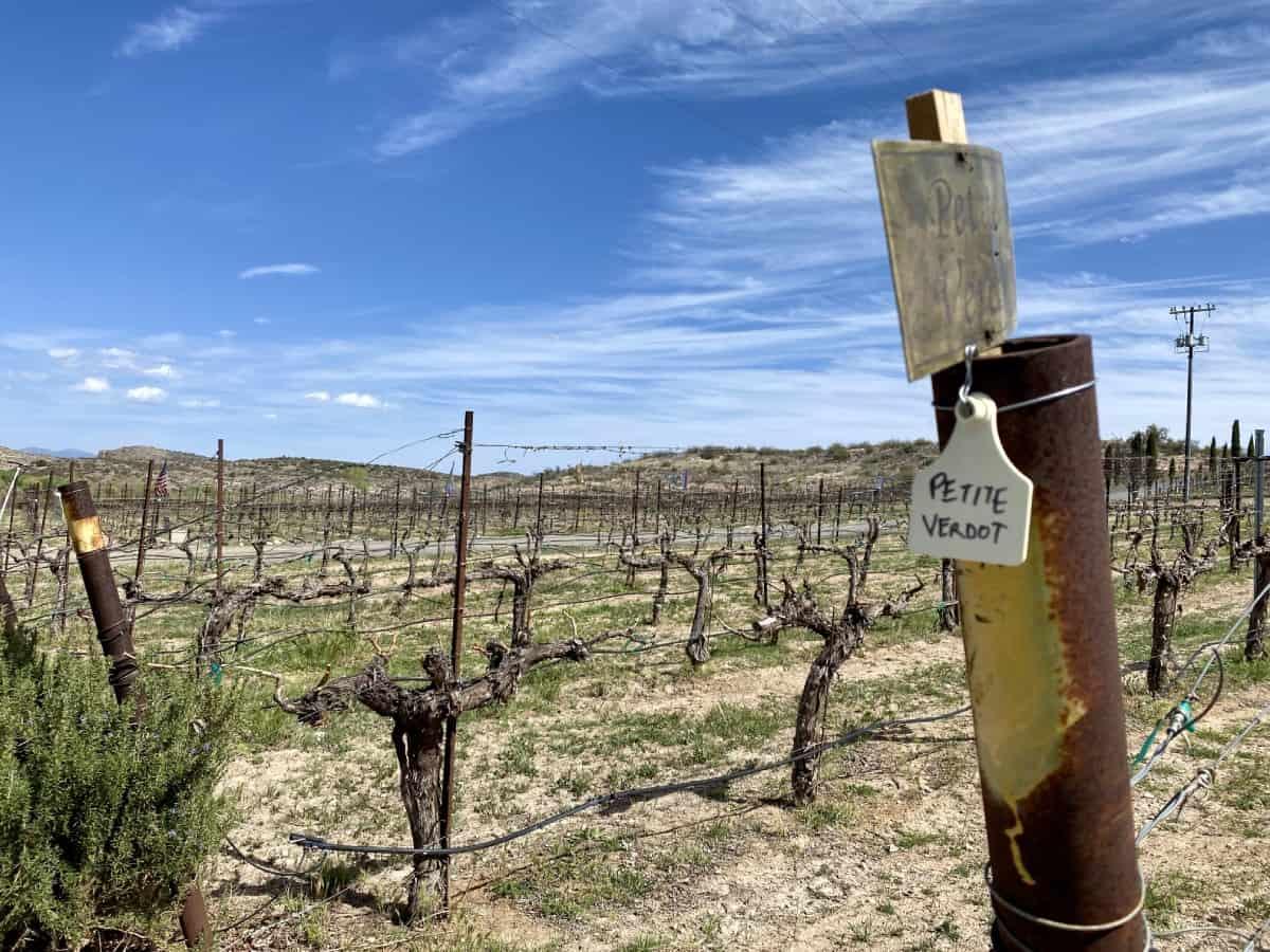 Alcantara is a perfect visit between Phoenix & Sedona - Sedona wineries guide