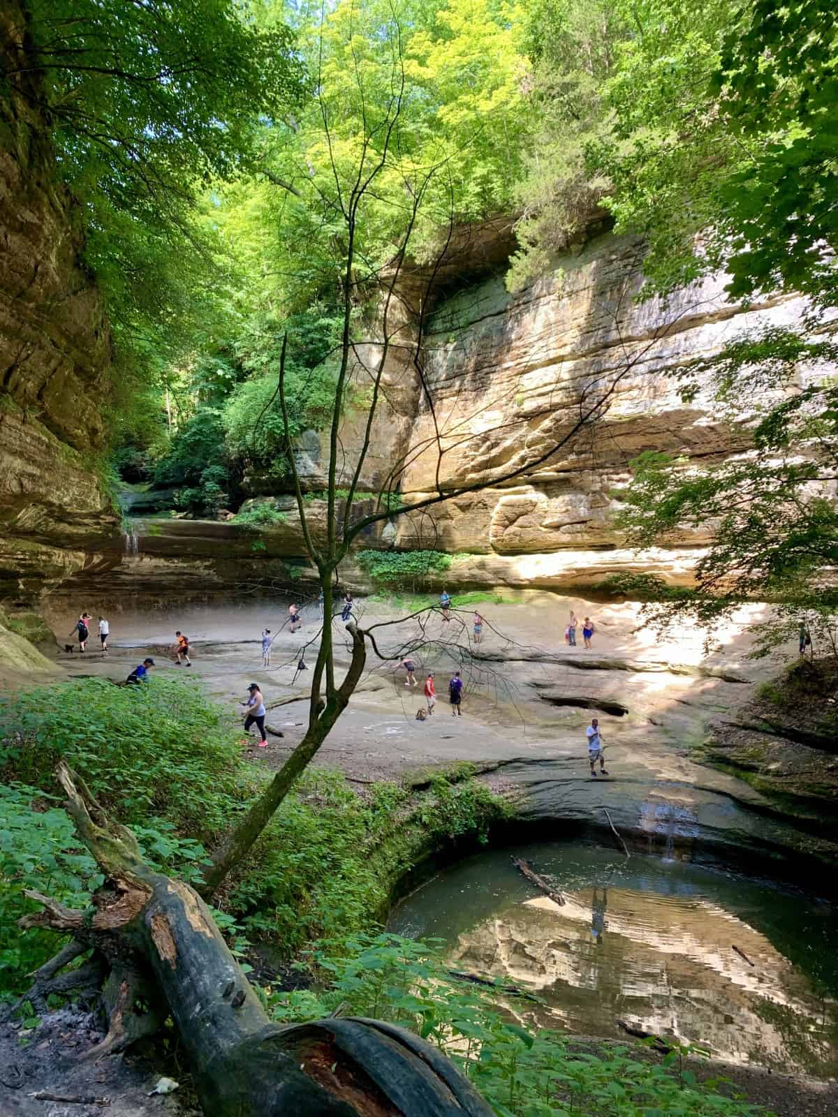 If you have time, take a day trip to Starved Rock State Park for some hiking - things to do in Chicago