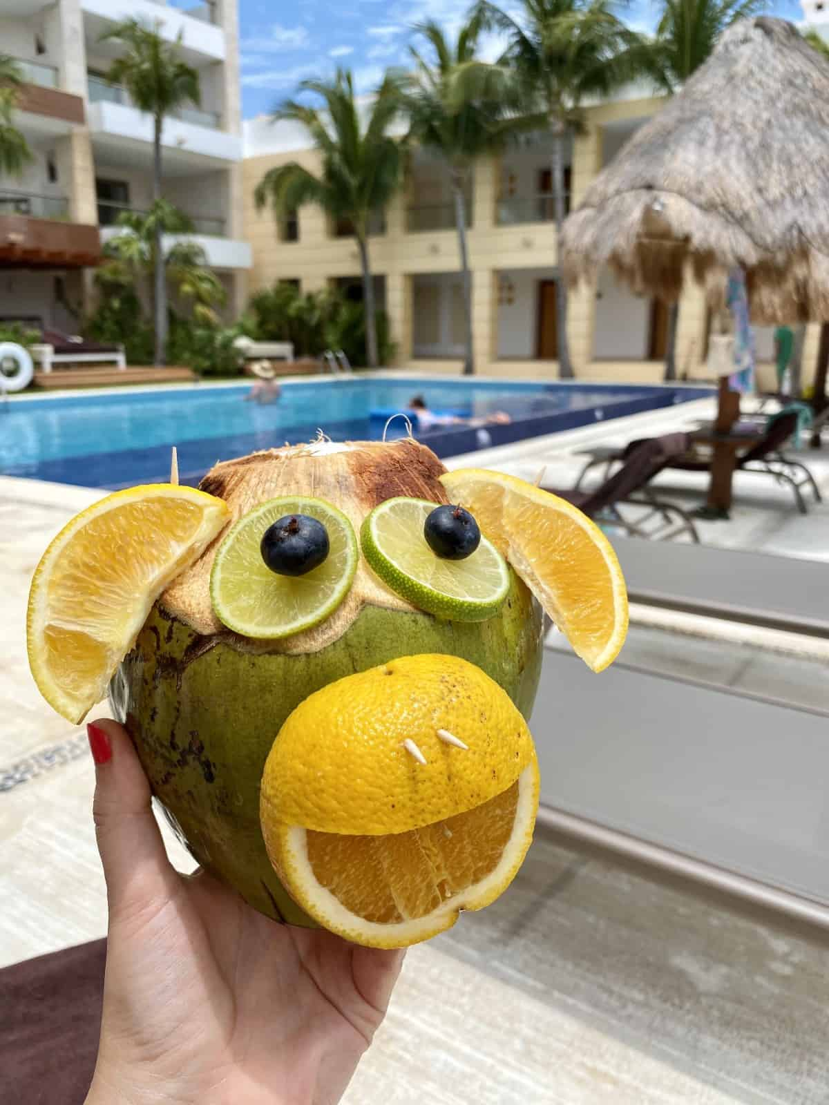 A coco loco at Excellence Playa Mujeres