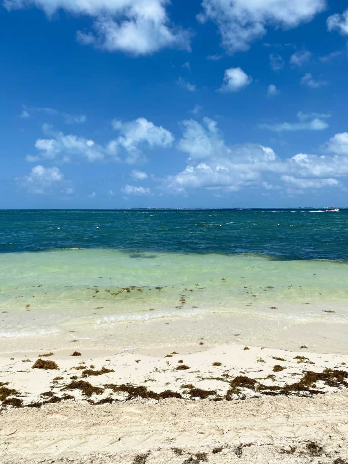 A detailed review of Excellence Playa Mujeres - the beach is not the best