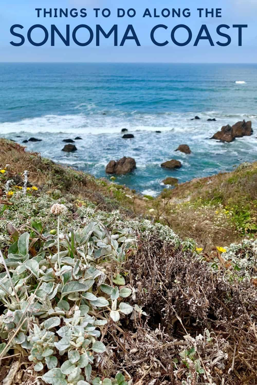 What to Do Along California's Sonoma Coast | This stretch of coastline has stunning views, awesome hiking, proximity to wine country, & great food. Things to do on the Sonoma Coast, what to see on the Sonoma Coast, tips & more! Northern California coast roadtrip ideas. #sonomacoast #california #roadtrip #northerncalifornia #bodegabay