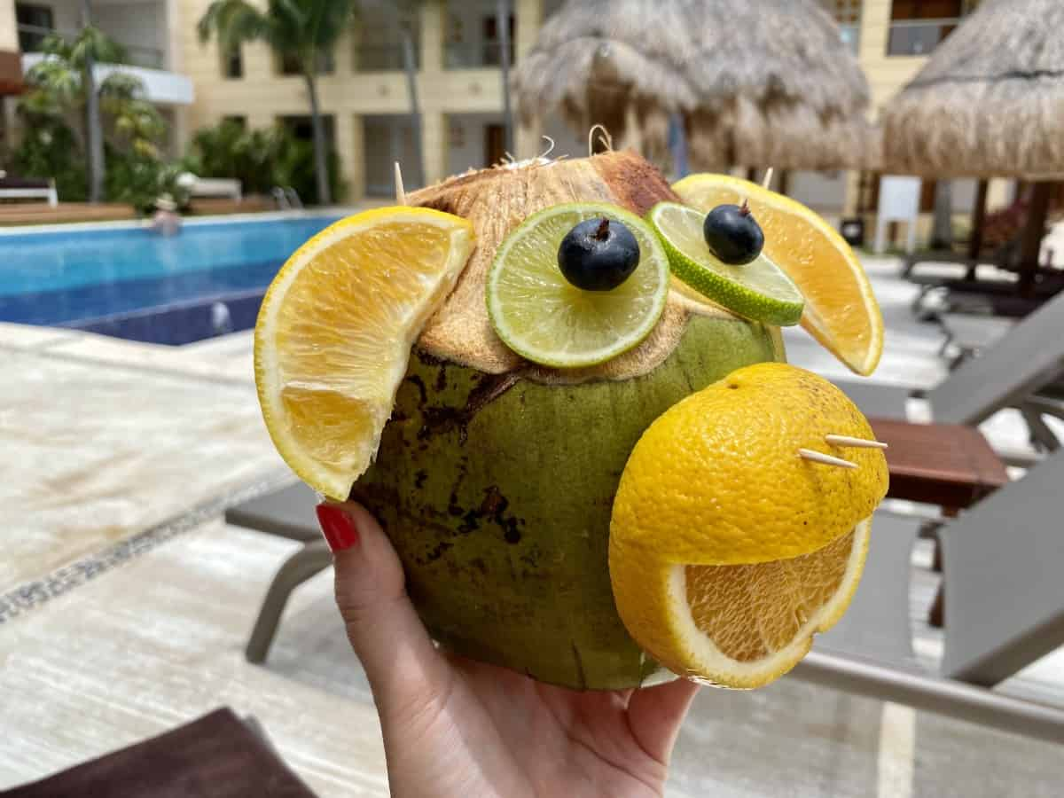 Detailed review of LeBlanc Cancun vs. Excellence Playa Mujeres - the coco loco monkey was a goodbye gift