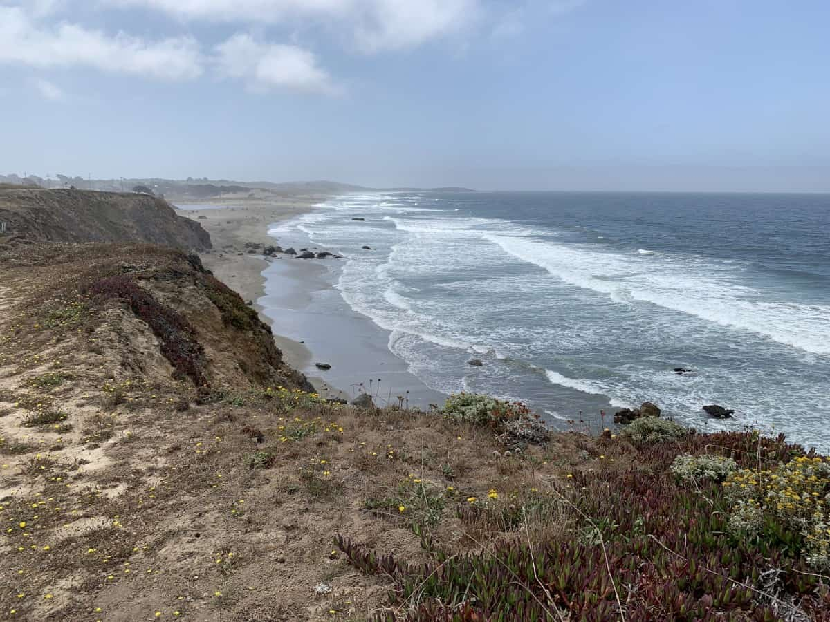 Stopping whenever you want is one of the best things to do on the Sonoma Coast | Sonoma Coast roadtrip or Northern California coast roadtrip ideas.