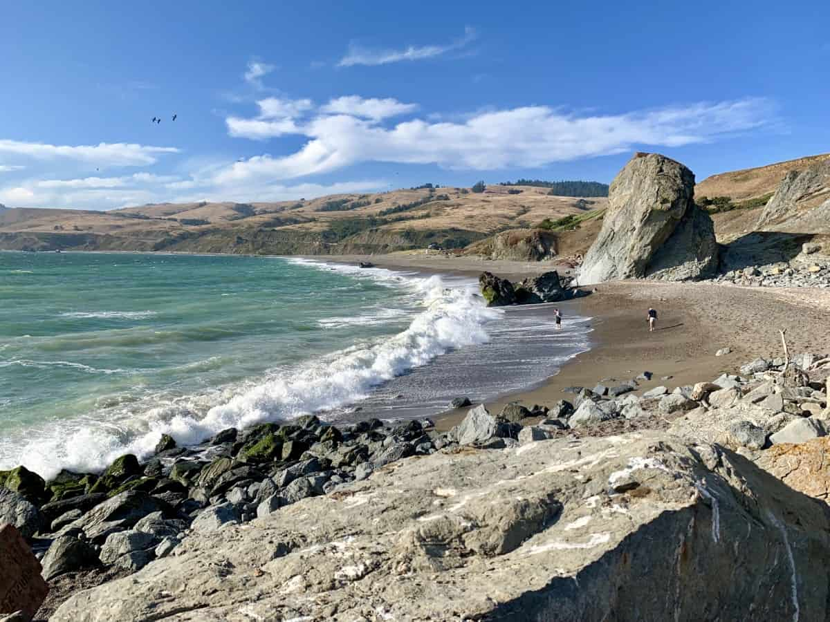 Visit Goat Rock Beach - Things to Do on the Sonoma Coast, California